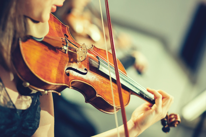 Violinist Appointment Booking Software