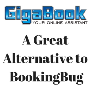 Alternative to BookingBug