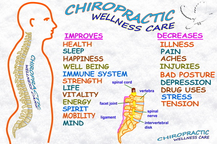 Chiropractic Wellness Center Appointment Software
