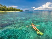 Snorkeling Excursion Booking Software