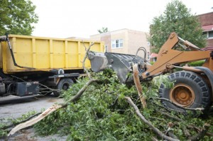 Tree Removal Appointment Booking Software