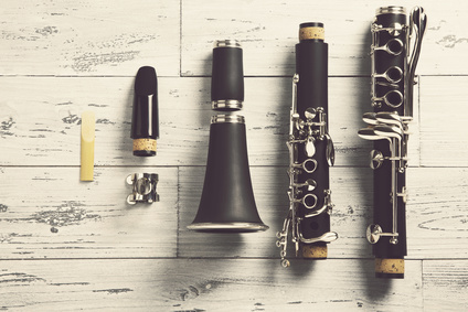 Clarinet Instructor Lesson Scheduling Software
