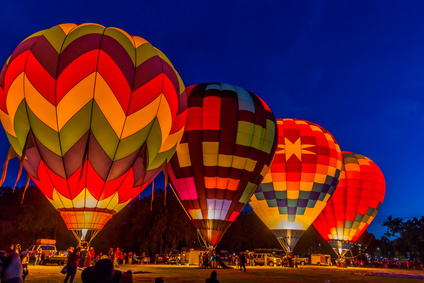Balloonist Appointment Booking Software