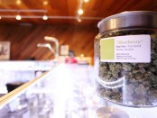 Appointment Apps For Marijuana Dispensaries