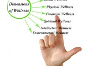 Online Scheduling Software for Wellness Consulting